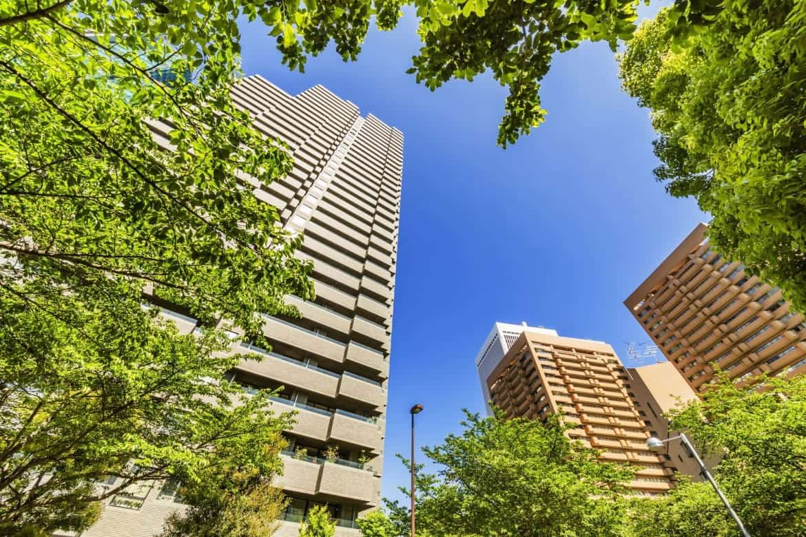 Tower blocks with trees