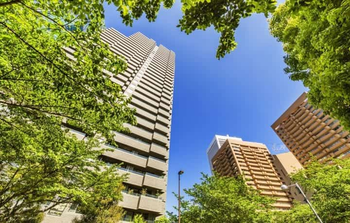 Tower blocks with trees - Kensa Consulting