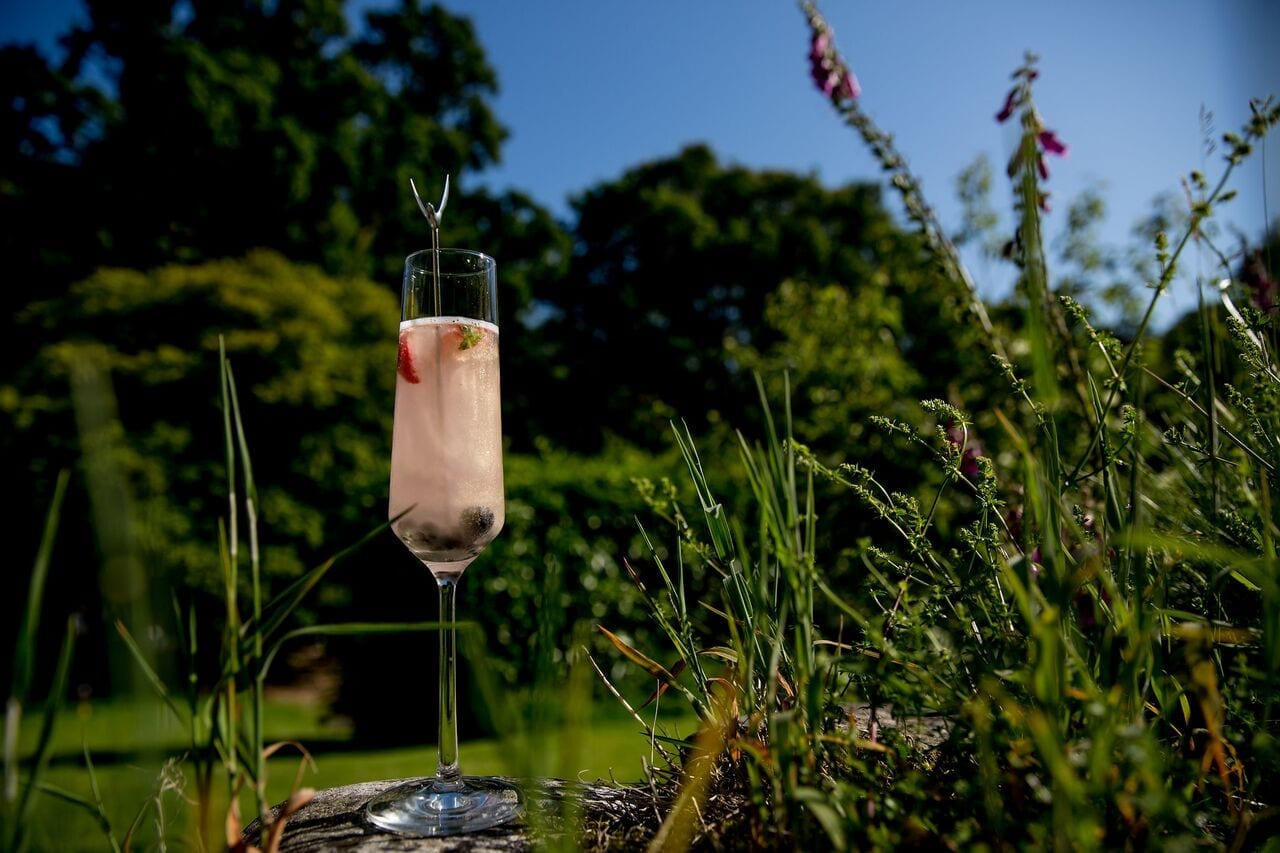 reception drinks at Ever After
